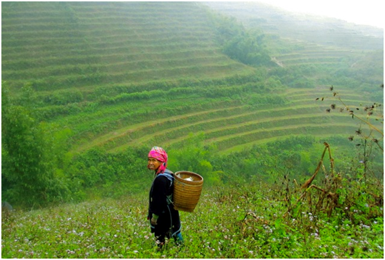 NORTH VIETNAM Package  (7D-6N)