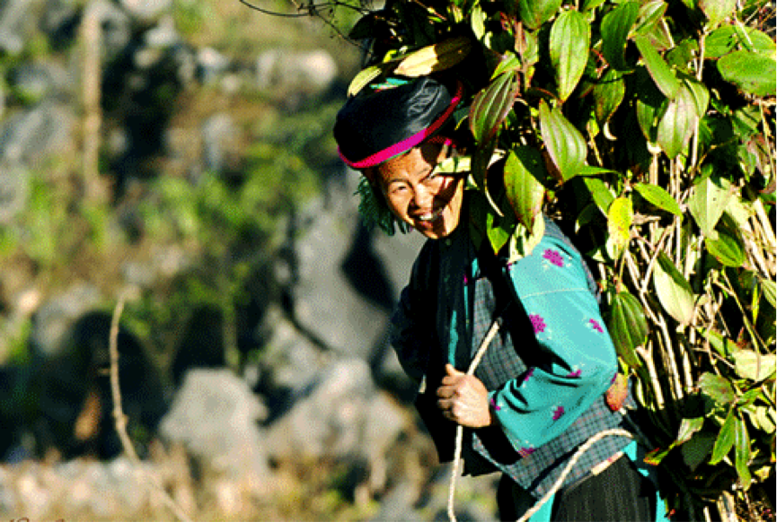 NORTH EAST Vietnam Adventure Package (8D-7N)