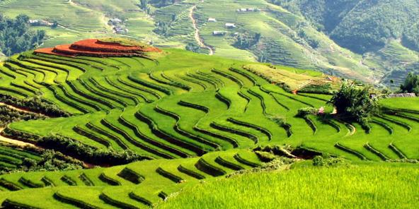 SAPA TREKKING Package (4D-3N)