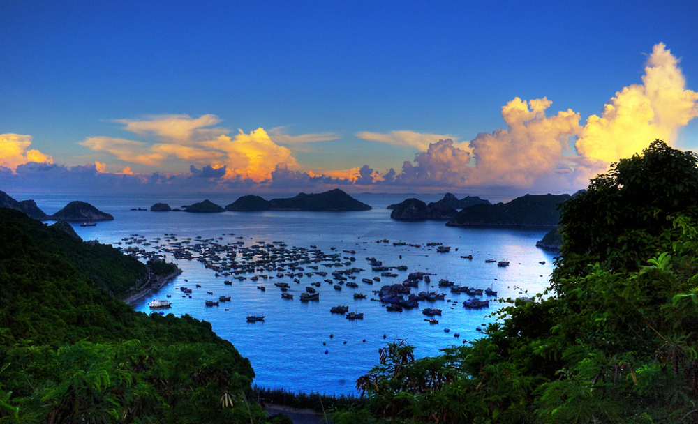 Hanoi Cat Ba Island Halong Bay 4d 3n
