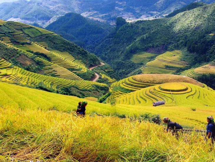 SAPA – BAC HA MARKET Package  (2D-3N)