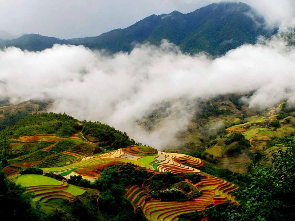 SAPA– BAC HA MARKET Package