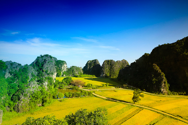 HANOI-NINH BINH Full day Package Tour